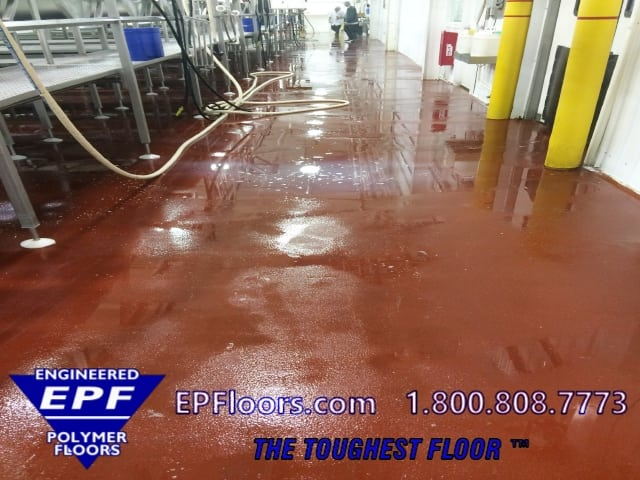dairy processing floor