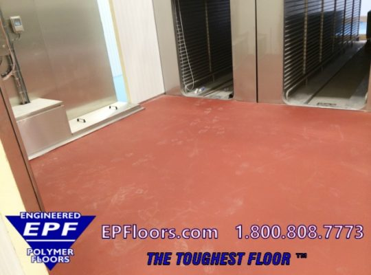 meat cooler poultry floor