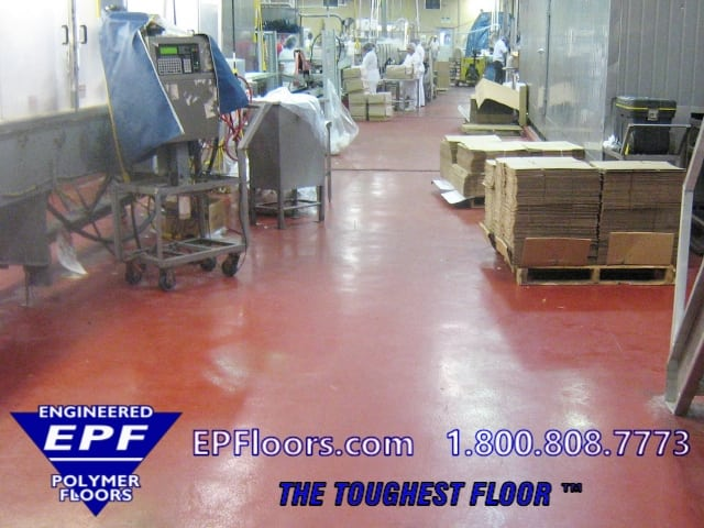 cold seafood floor